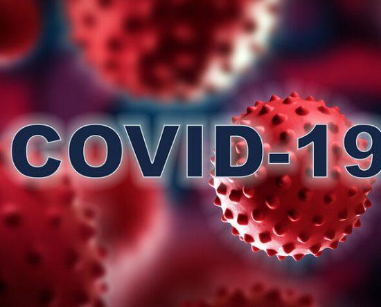 pa rapolitika argolidas covid-19